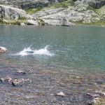lago de curavacas