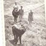 Rafael Cuesta en los puertos de pineda con su mula,  su único transporte.